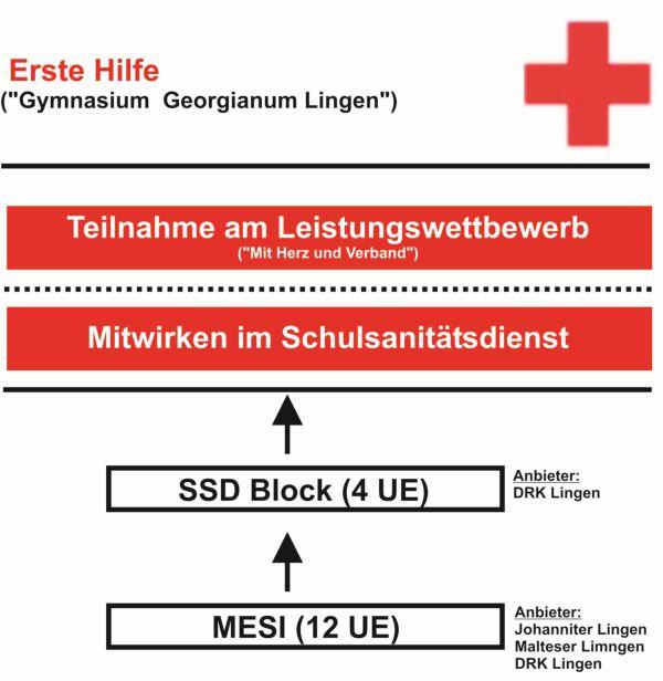 Grafik Erste Hilfe
